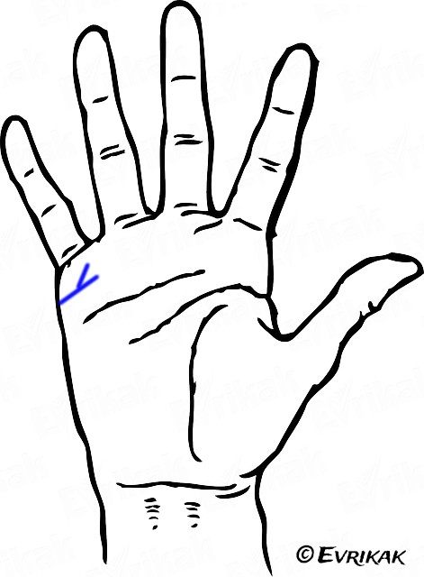 hand-one-thick-line-twice