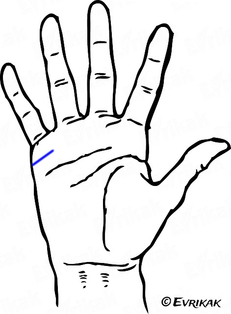 hand-one-thick-line