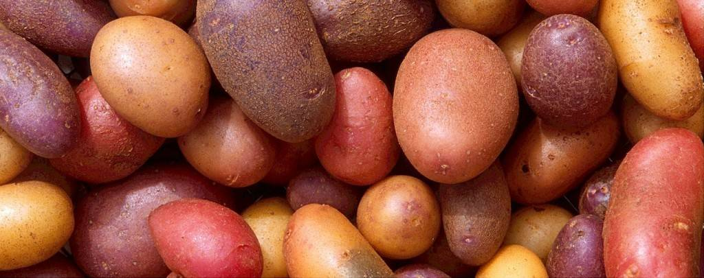 potatoes-522486_1280